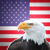 Wiki Bird: Bird sounds, identification, calls USA of North America free