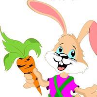 兔子复仇记-疯狂兔子