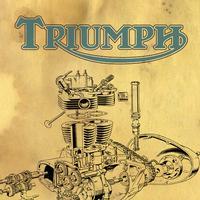 Triumph Engine Rebuild