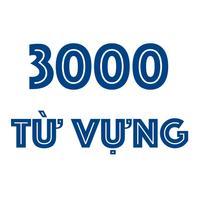 3000 Từ Vựng Thông Dụng