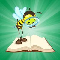 Spelling Bee Words