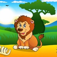 Picture Book: Animal Flash card