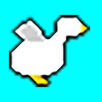 Chicken-Dash