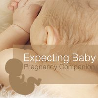 Expecting Baby - Pregnancy Companion