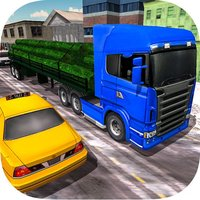 Cargo Delivery Truck Driver 18