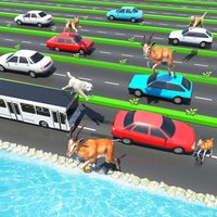 Animal Pet Traffic Crossing