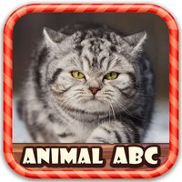 Animal Figure ABC