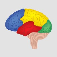 Brain Challenge - Best Brain Training Game