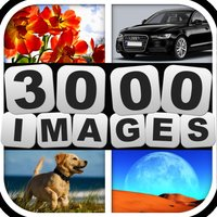 Guess 3000 Images