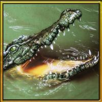 Wild Hungry Crocodile 3D. Swamp Aligator Attack in WildLife Simulator 2016