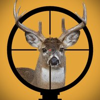 Wild Deer Hunting 2016