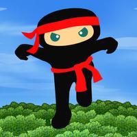 Ninja Fall Quest
