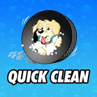 Quick Clean Car & Pet Wash