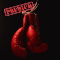 20 Min Boxing Workout -  Train like a boxer Pro