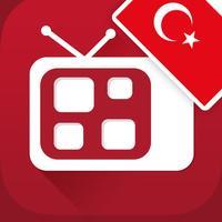 Türk Televizyonu