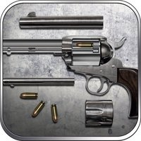 Colt: the Ryo Saeba's Pistol, Shooting & Hunting Trivia Game - Lord of War
