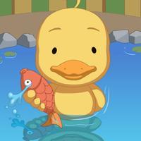 Stupid Duck Find Fish
