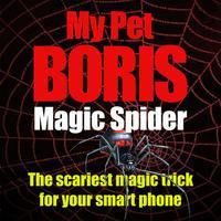 Magic Spider - My Pet Boris