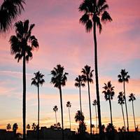 California Property Search