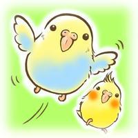 Flying! Parrots
