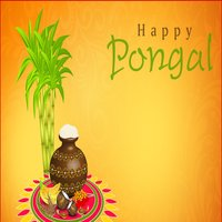 Happy Pongal Greetings And Messages
