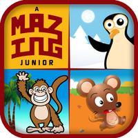 aMazing Junior
