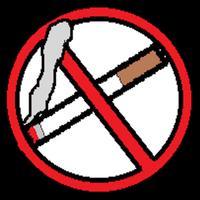 禁煙アプリ「あなたの肺」