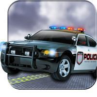 Real Police Car Stunts